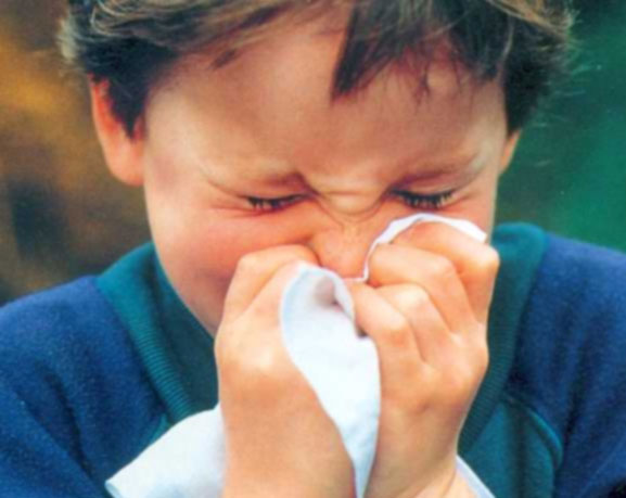 Penyakit sinusitis pada anak di www.rahasia-wanita.com